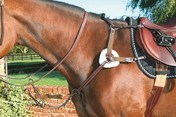 Mark Todd 5 Point Breastplate