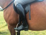 Mark Todd Toddy Half Chaps Synthetic Stretch