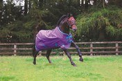 Masta Avante Light Turnout Rug