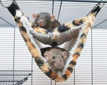 Relax Deluxe Fake Fur Hammock