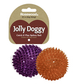 Rosewood Jolly Doggy Catch & Play Spikey Ball