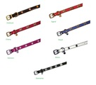 Wag 'n' Walk Designer Dog Collars