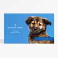 Wisdom Panel Essential Dog DNA Collection Kit