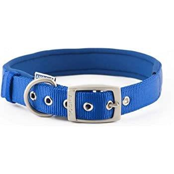 Ancol Padded Nylon Eyelet Dog Collar