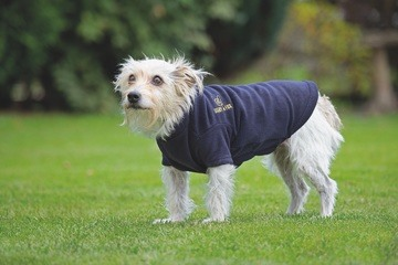 Digby & Fox Fleece Dog Jumper Navy