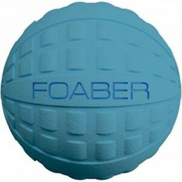 Foaber Pet Bounce Dog Toy