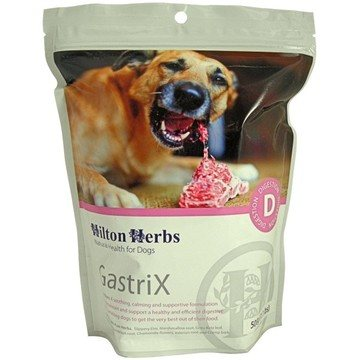 Hilton Herbs GastriX for Dogs