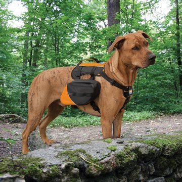 Kurgo Baxter Backpack for Dogs