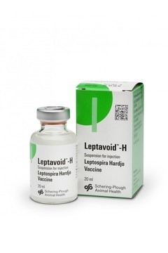 Leptavoid H for Cattle