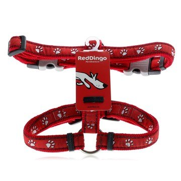 Red Dingo Desert Paw Red Dog Harness