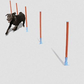 Rosewood Agility Slalom Course for Dogs