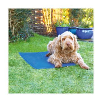 Rosewood Pet Cool Mat