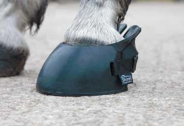 Shires Temporary Shoe Boot Black