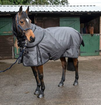 Whitaker 200g Grey Tweed Denshaw Turnout Rug
