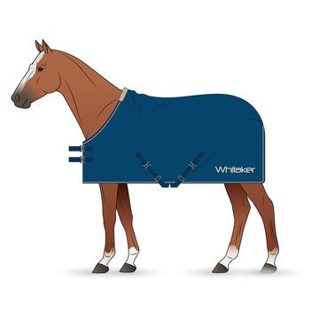 Whitaker Rydal Blue Show Rug for Horses