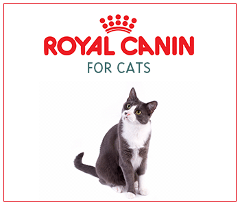 Royal Canin for Cats