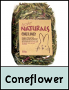 Boredom Breaker Treats » Coneflower