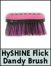 HySHINE Glitter Dandy Flick Brush