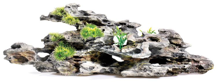 Driftwood With Plants » 16cm