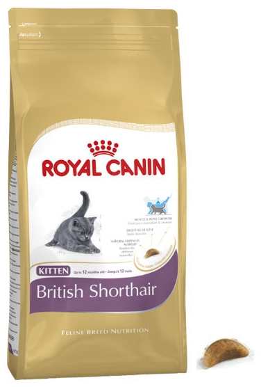 royal canin feline breed nutrition british shorthair kitten cat food. Black Bedroom Furniture Sets. Home Design Ideas