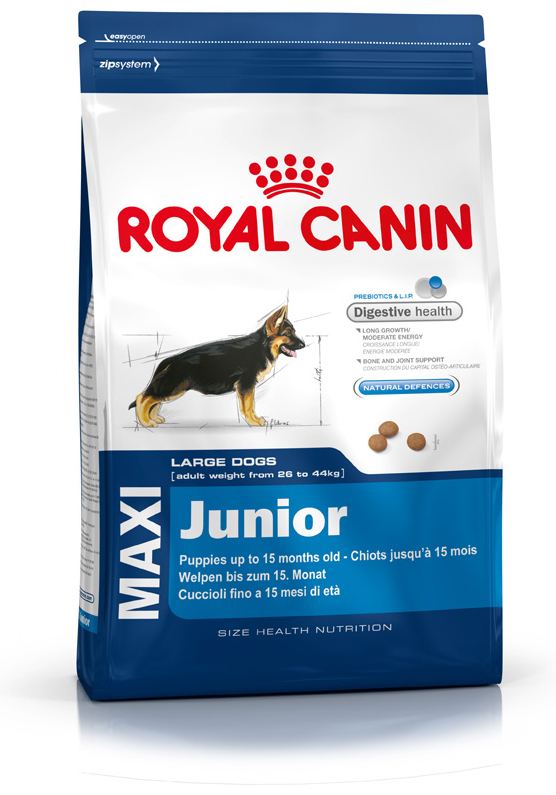 royal canin size health nutrition maxi junior dog food. Black Bedroom Furniture Sets. Home Design Ideas