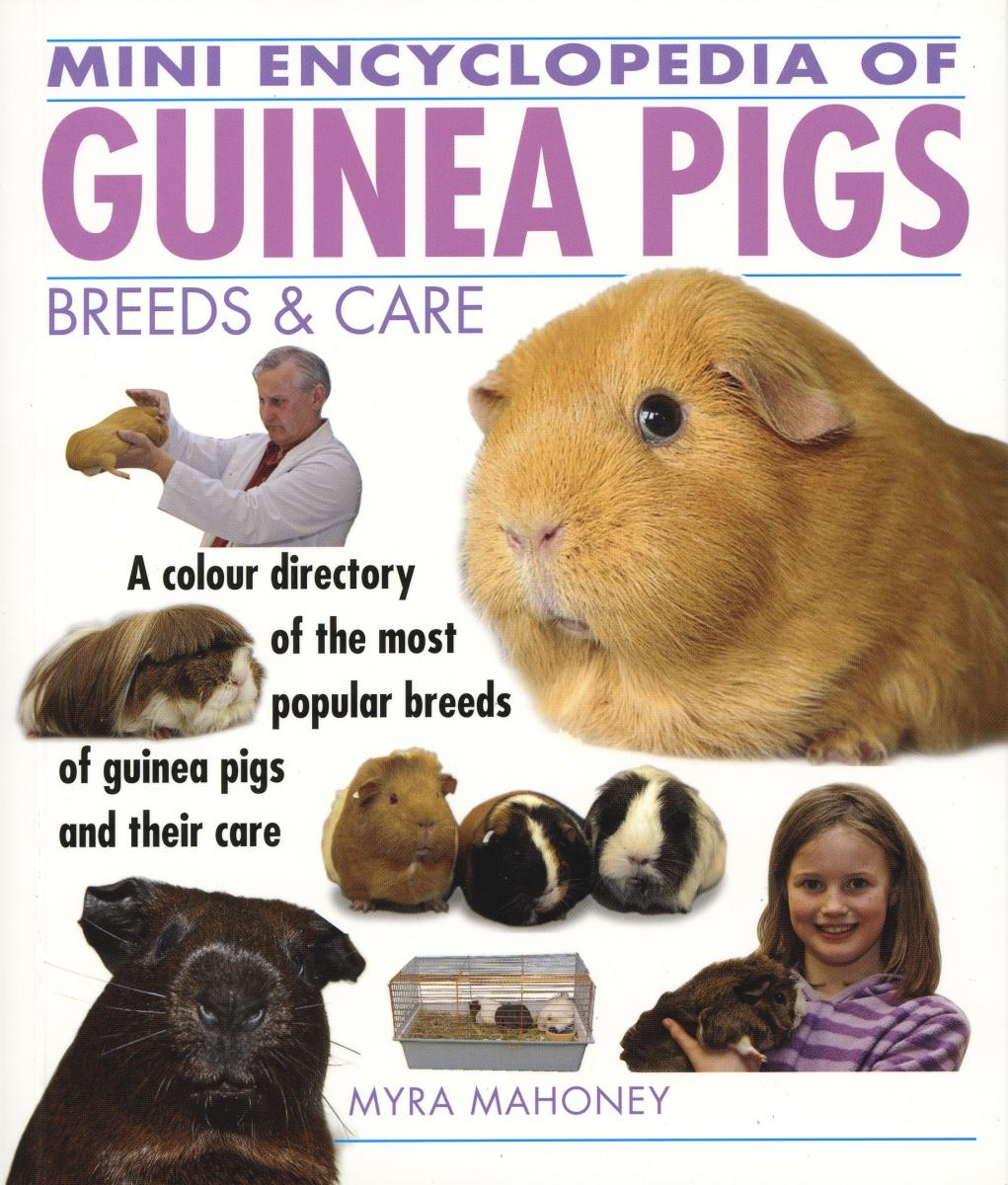 Guinea Pig Mini Encyclopedia