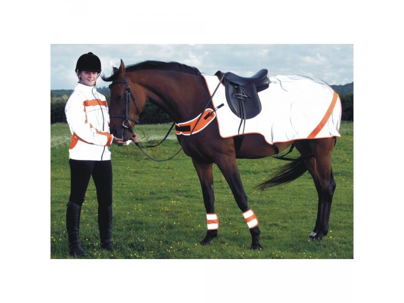 Silver/Orange » Warmblood
