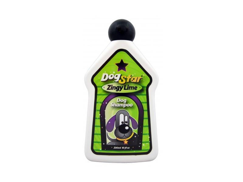 Zingy Lime » 300ml