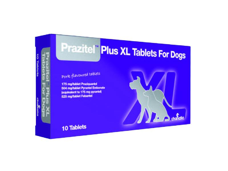 Dog Plus XL » Priced per Tablet
