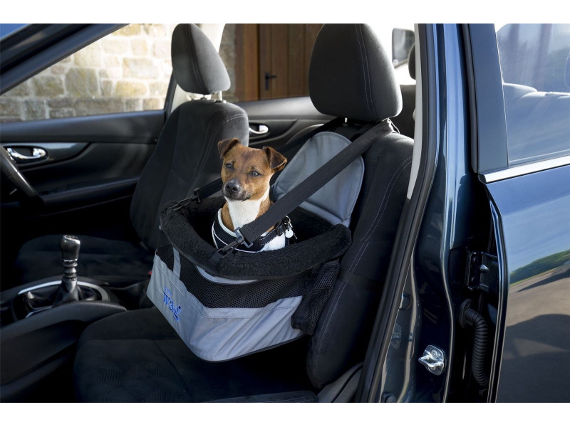 Car Booster Seat » Dog
